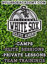 Chicago Bulls Sox Baseball Youth Academy Illinois