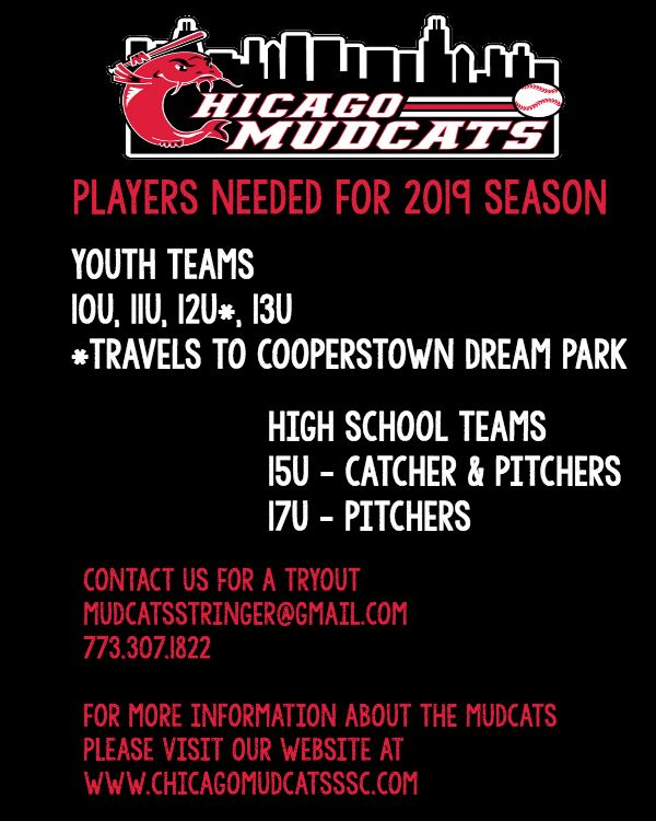 Chicago Mudcats Youth Baseball Tryouts Illinois