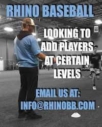 Rhino Baseball looking for baseball players