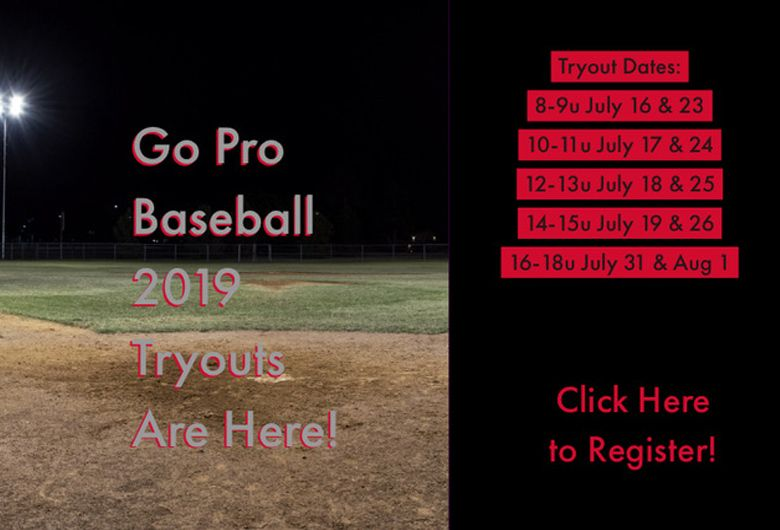 Go Pro Baseball Tryout Schedule