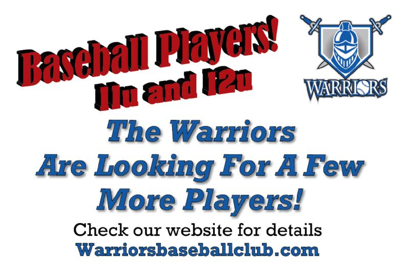 Team looking for 11u and 12u baseball players