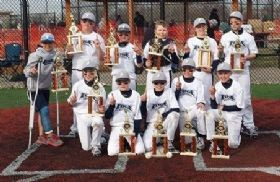 8U Youth Baseball Championship Photo Gallery